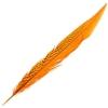 Silver Pheasant Tail 18-20in (5pcs) Dyed Orange